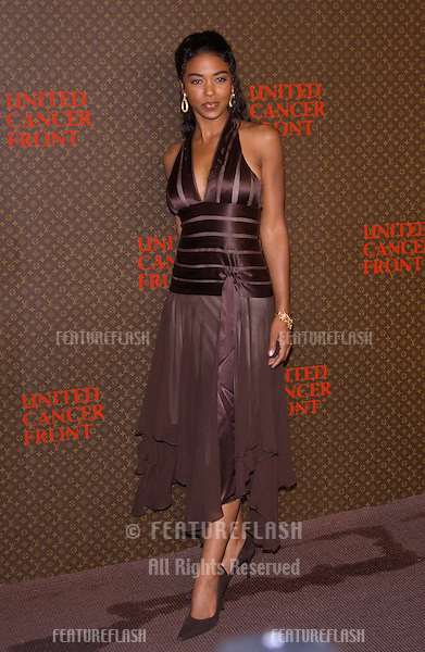 Nov 8, 2004; Los Angeles, CA; Actress ANANDA LEWIS at the Louis Vuitton United Cancer Front Gala at Universal Studios, California.