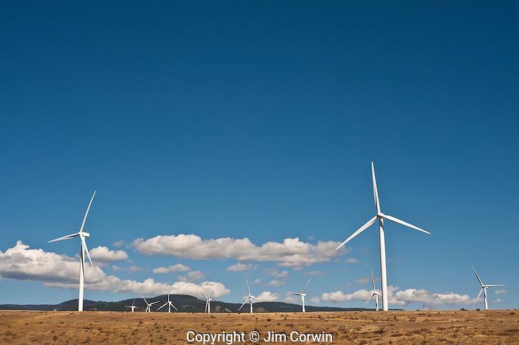 Wind machines, turbine farm in Eastern Washington
