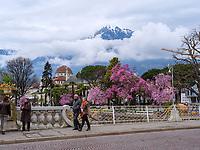 Kurhaus und Postbr&uuml;cke in Meran-Merano, Bozen &ndash; S&uuml;dtirol, Italien<br /> Spa building and post bridge, Meran-Merano, province Bozen-South Tyrol, Italy