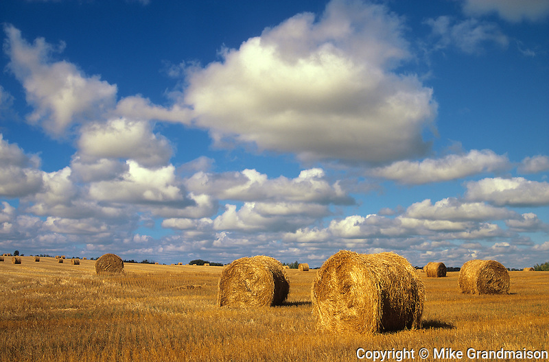bales and clouds<br /> Sherbrooke<br /> Saskatchewan<br /> Canada