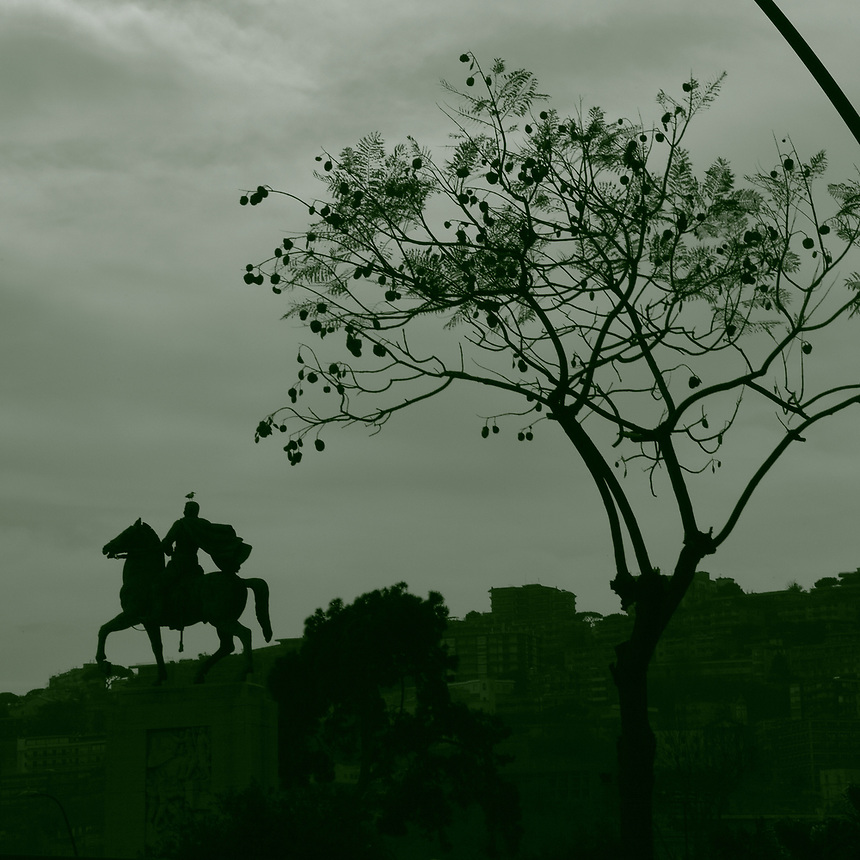 Napoli:   The metal equestrian statue of the general Armando Diaz, that is located on a high pedestal in a semicircular square on the seafront, near the communal gardens. Here a suggestive artistic monochrome view in backlit, with a part of the high town on the background, on which the horse appears to walk, and a beautiful tree on the right. One can notice a seagull on the top of the statue. This is an enlargement of a part of the original photo.<br /> <br /> You can download this file for (E&amp;PU) only, but you can find in the collection the same one available instead for (Adv).