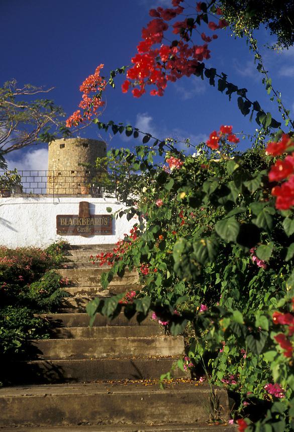 AJ2357, U.S. Virgin Islands, St. Thomas, Virgin Islands, Caribbean, USVI, U.S.V.I., Bougainvillea flowers decorate the grounds of Blackbeard's Castle in Charlotte Amalie the territorial capital of the US Virgin Islands on Saint Thomas Island.