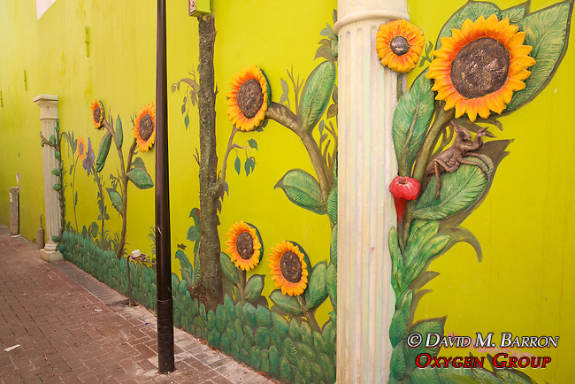 Wall Art Punda