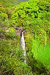 Makahiku Falls, Haleakalā National Park, Maui, Hawaii.