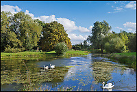 BNPS.co.uk (01202 558833)<br /> Pic: Strutt&amp;Parker/BNPS<br /> <br /> The beautiful river Stour runs through the estate...<br /> <br /> A river runs through it...Stunning country estate is perfect for anglers with its own river running through its 676 acres.<br /> <br /> Would-be country gents will want to get their hands on this impressive estate which comes with more than a mile of double-bank fishing and an established shoot.<br /> <br /> Baythorne Park is a 'quintessentially English' estate which straddles the River Stour on the Essex/Suffolk border, an area where grand properties like this rarely come on the market.<br /> <br /> But buyers will need a hefty bank balance to buy the &pound;11million residence, which is for sale with Strutt &amp; Parker.<br /> <br /> The 676-acre site includes a Grade II listed mansion, gardens with a tennis court and swimming pool, farm buildings and pasture, parkland and woodland.