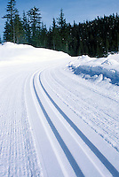 Groomed Cross Country Ski Tracks at Whistler Olympic Park - Site of Vancouver 2010 Winter Games British Columbia Canada