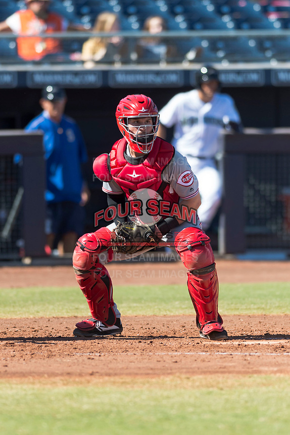 Scottsdale Scorpions catcher Mark Kolozsvary (98), of the Cincinnati Reds organization, during an Arizona Fall League game against the Peoria Javelinas at Peoria Sports Complex on October 18, 2018 in Peoria, Arizona. Scottsdale defeated Peoria 8-0. (Zachary Lucy/Four Seam Images)