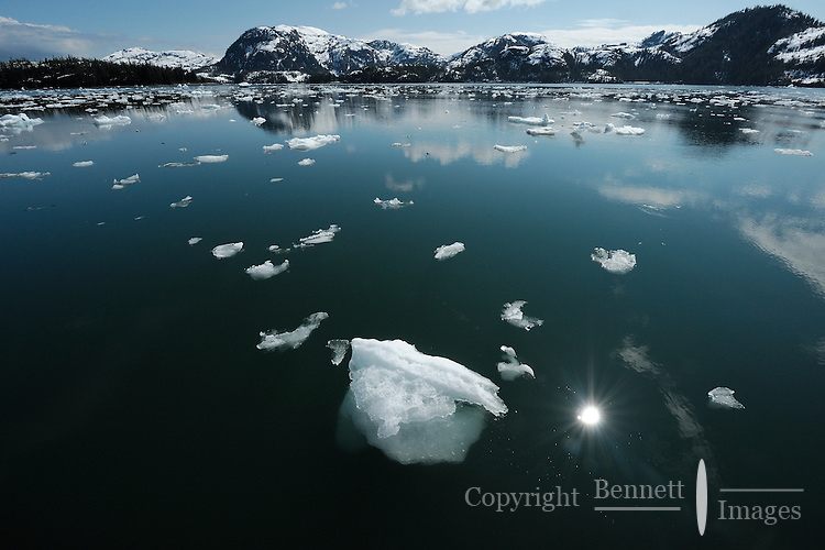Bergy bits and brash ice float in Glacier Passage, with Glacier Island in the background, in Prince William Sound, Southcentral Alaska on a sunny spring day in early May.
