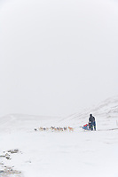 2006 Yukon Quest musher in near whiteout conditions on Eagle Summit.
