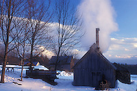 sugarhouse, maple syrup, winter, Cabot, VT, Vermont, Sugar shack steaming at sugaring time in early spring in Cabot.