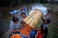 "Campesinos wash for market freshly-picked carrots in a river in Los Negros, Bolivia Friday, Nov. 12, 2004. Ernesto ""Che"" Guevara was captured by the Bolivian army in 1967 in a nearby valley and executed in La Higuera days later. His body was put on public display in the laundry room of the Vallegrande hospital, then secretly buried under the air strip for 30 years. Guevara and fellow communist guerillas were attempting to launch a continent-wide revolution modeled on Guevara's success in Cuba in the late 1950s. The Bolivian government recently began promoting the area where he fought, was captured, killed and burried for 30 years as the ""Ruta del Che,"" or Che's Route. (Kevin Moloney for the New York Times)"