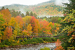 The Wild River, White Mountain National Forest, ME, USA