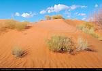 Sand Dune, Sand Springs, Monument Valley Navajo Tribal Park, Navajo Nation Reservation, Utah/Arizona Border