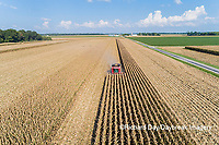 63801-12219 Harvesting corn-aerial  Marion Co. IL