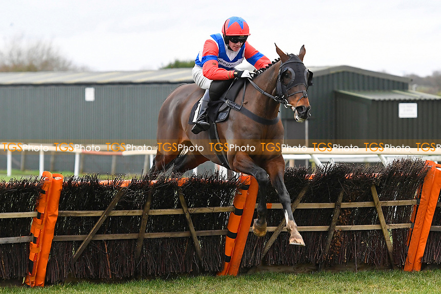 Chill Factor ridden by Ben Godfrey and trained by Anthony Honeyball jump the last in The Extech Cloud-Humanising It Handicap Hurdle during Horse Racing at Plumpton Racecourse on 10th February 2020