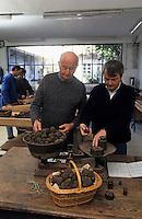Europe/France/Midi-Pyrénées/46/Lot/Vallée du Lot/Cahors: Pierre-Jean Pebeyre et son père Jacques - Négociants en truffes