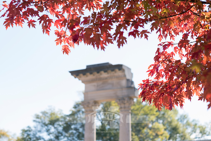 Fall leaves with Cobb pillars.<br />  (photo by Megan Bean / &copy; Mississippi State University)