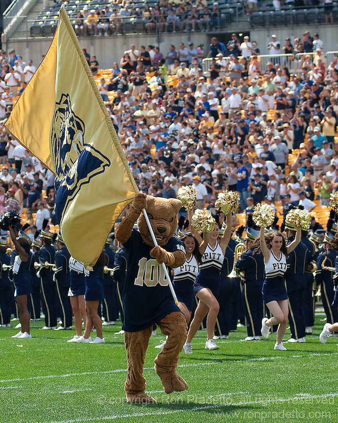 The Pittsburgh Panther Mascot. The Pittsburgh Panthers defeated the Youngstown State Penguins 38-3 at Heinz Field on September 5, 2009.
