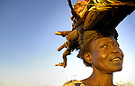 Back home after years of brutal war, a woman in the village of Amuca carries firewood home on her head in northern Uganda. A small number have returned home as peace talks continue.