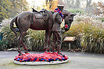 WEATHER INPUT - SATURDAY 9th Novemeber 2019<br /> <br /> Pictured: On this remembrance weekend, a frosty start to the day at the War Horse and Trooper statue, in the War Memorial park, Romsey, Hampshire.   The statue was created by Amy Goodman.<br /> <br /> Please byline: Natasha Weyers/Solent News<br /> <br /> © Natasha Weyers/Solent News & Photo Agency<br /> UK +44 (0) 2380 458800