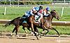 Delicat Notice winning at Delaware Park on 9/23/13