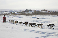 Musher Lance Mackey arrives in Candle in second place, the half way point of the 2008 All Alaska Sweepstakes sled dog race.