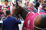 October 05, 2019, Paris (France) - Anapurna (7) after winning the Qatar Prix de Royallieu (Gr I) on October 5 at ParisLongchamp Race Course. [Copyright (c) Sandra Scherning/Eclipse Sportswire)]