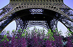 Early Spring At The Eiffel