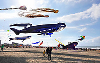 Nederland -  Scheveningen - September 2018. Vliegerfestival op het strand.    Foto Berlinda van Dam / Hollandse Hoogte