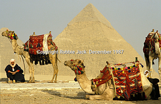 A man with a camels in front of the Pyramids of Giza which consist of the Great Pyramid of Giza also known as The Pyramid of Khufu, the somewhat smaller Pyramid of Khafre and the relatively modest sized Pyramid of Menkaure. Egyptologists believe that the Great Pyramid was built as a tomb for the Pharaoh Khufu around 2560 BC.It is the oldest of the seven wonders of the ancient world. At 481 feet high it remained the tallest man made structure in the world for over 3,800 years.