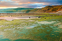 Rock pools & cliffs of the historic fishing village of Robin Hood's Bay, Near Whitby, North Yorkshire, England.