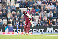 Shai Hope (West Indies) drives straight during England vs West Indies, ICC World Cup Cricket at the Hampshire Bowl on 14th June 2019