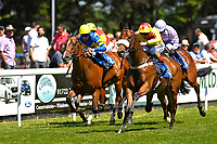 Winner of The Inspire Foundation Veterans' Handicap   Rio Ronaldo ridden by Adrea Atzeni nearside during Whitsbury Manor Stud Bibury Cup Day Racing at Salisbury Racecourse on 27th June 2018