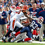 4 November 2007: Buffalo Bills wide receiver Lee Evans is pushed out of bounds after pulling in a pass from quarterback J.P. Losman during a game against the Cincinnati Bengals at Ralph Wilson Stadium in Orchard Park, NY. The Bills defeated the Bengals 33-21 in front of a sellout crowd of 70,745...Mandatory Photo Credit: Ed Wolfstein Photo