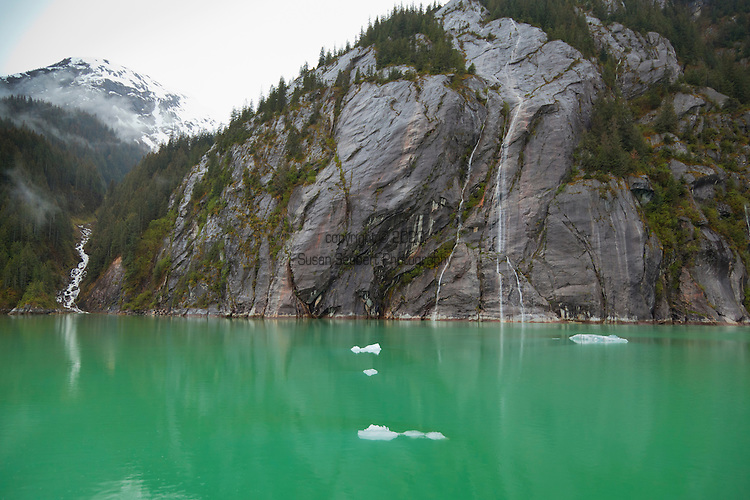 Endicott Arm and Dawes Glacier in Alaska's Inside Passage Tracy Arm-Fords Terror Wilderness Area in the Tongass National Forest.