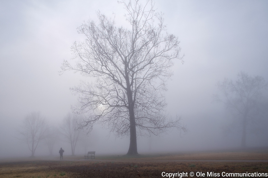 Foggy morning walk at Pat Lamar Park. Photo by Robert Jordan/Ole Miss Communications