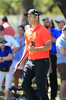 John Rahm (ESP) on the 7th during the 2nd round at the WGC Dell Technologies Matchplay championship, Austin Country Club, Austin, Texas, USA. 23/03/2017.<br /> Picture: Golffile | Fran Caffrey<br /> <br /> <br /> All photo usage must carry mandatory copyright credit (&copy; Golffile | Fran Caffrey)