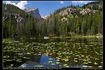 Nymph Lake, RMNP