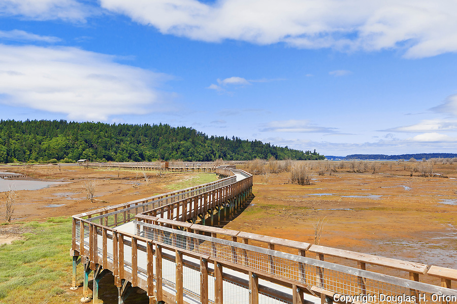 A boardwalk extends over recovering tide flats and salt march after former dikes have been broached to allow nature to recover.  Nisqually River Delta, Nisqually National Wildlife Refuge, Washington State.