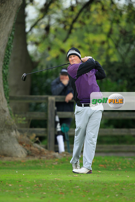 Michael McGeady on the 1st during Round 3 of The Cassidy Golf 103rd Irish PGA Championship in Roganstown Golf Club on Saturday 12th October 2013.<br /> Picture:  Thos Caffrey / www.golffile.ie