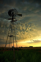 Mammatus clouds bubble downward as a severe storm approaches a windmill near Woodward Oklahoma in June.
