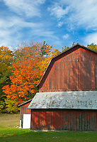 Sleeping Bear Dunes National Lakeshore, MI:  The historic Charles Olsen barn in fall (built in 1918 and is a hillside barn)