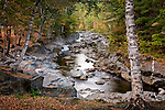 Fall colors the Swift River in Coos Canyon, Byron, ME