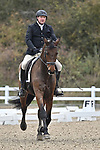 Stapleford Abbotts. United Kingdom. 08 November 2019. Class 6. British Dressage. Brook Farm training centre. Stapleford Abbotts. Essex. United Kingdom. Credit Garry Bowden/Sport in Pictures.~ 08/11/2019.  MANDATORY Credit Garry Bowden/SIP photo agency - NO UNAUTHORISED USE - 07837 394578