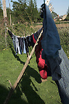 Clothes drying on washing line in garden