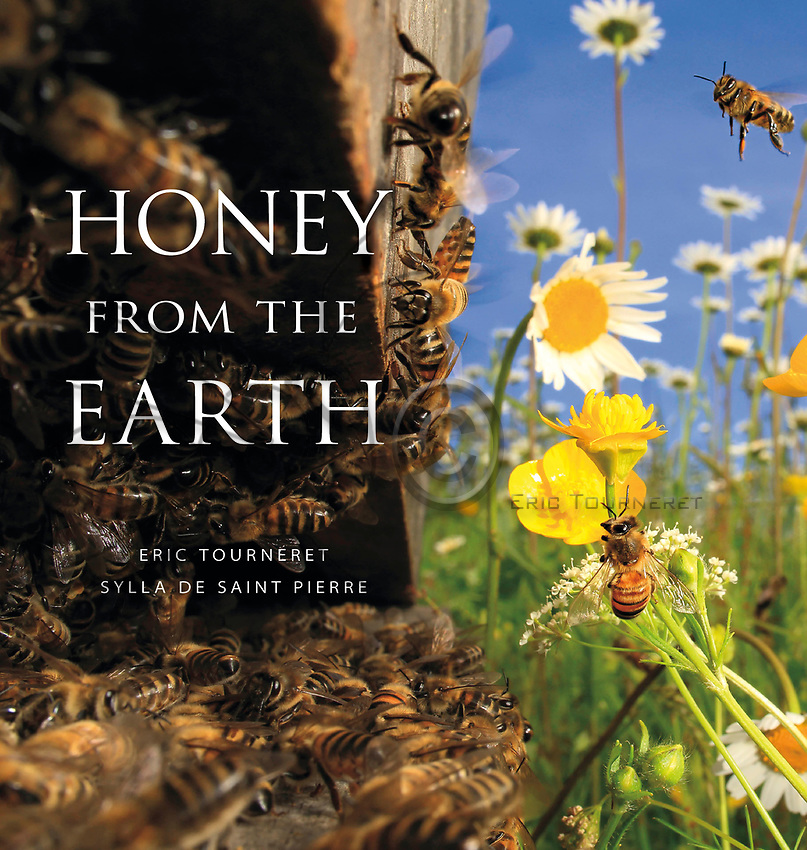 HONEY FROM THE EARTH