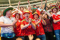 Welsh supporters react in the UEFA EURO 2016 fan zone set up in the Principality Stadium, Cardiff, Wales, Britain, 6 July 2016, watching Portugal vs Wales EURO 2016 semi-final match. Athena Picture Agency/ALED LLYWELYN/ATHENA PICTURES