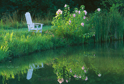 White adirondack chair on dam of rural pond near blooming flowers