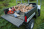 Polaris Ranger side-by-side UTV being used in a firewood cutting operation