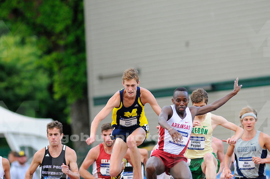 The University of Michigan Men's track and field team's compete on the second day of the 2014 Outdoor NCAA Track and Field Championships at Hayward Field. Eugene, OR. June 12, 2014